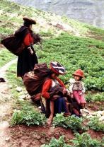 Peru 131