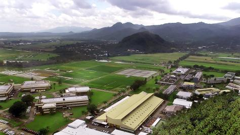 IRRI from the air
