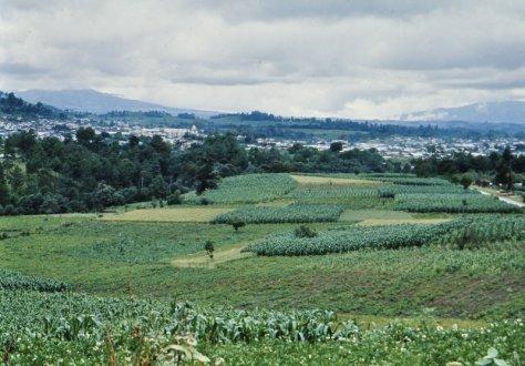06-1977-07 Comalapa 01