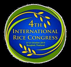 IRC 2014 logo final