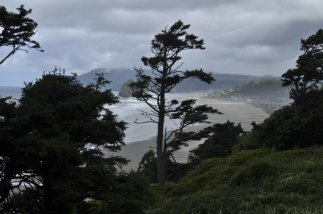 Just south of Port Orford