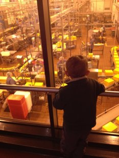 Grandson Callum watching cheese making