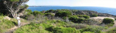 Overlooking Overlooking the Tasman Sea at Tathra