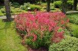 20140709047 Kew Gardens