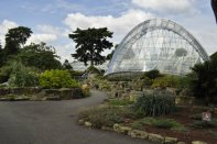20140709067 Kew Gardens-001