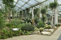 Inside the Conservatory