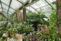 20140709078 Kew Gardens-001