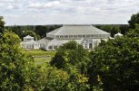 The Temperate House - under renovation, taken from the aerial walkway