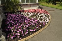 20140709165 Kew Gardens