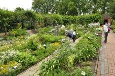 20140709196 Kew Gardens