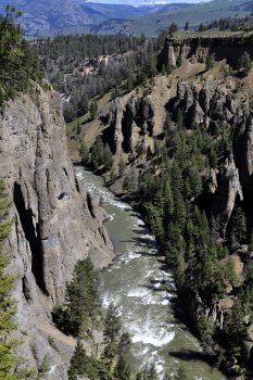 The Yellowstone River canyon