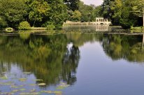Looking east across the Octagon Lake towards the Palladian Bridge
