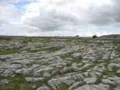 Limestone pavement or karst.