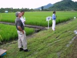 Rice breeder Dr Gary Atlin explains about drought tolerance in rice