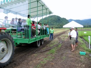 Dr Bas Bouman explains some of the intricacies of water management in rice paddies - bootless!