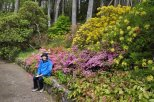 In Inverewe Garden