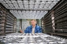Dr Ruaraidh Sackville Hamilton examines seed samples in aluminium cans in the IRG Base Collection.