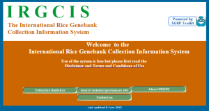 IRGCIS