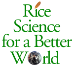 Rice Science copy