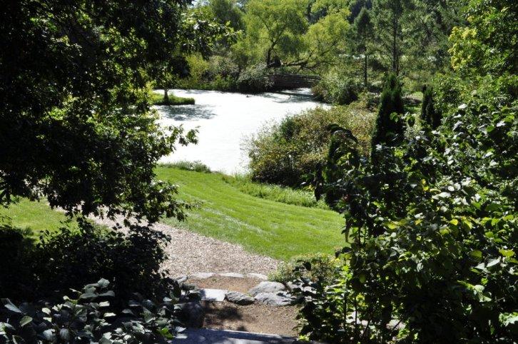 The Green Heron Pond