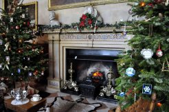 The fireplace in the entrance hall.