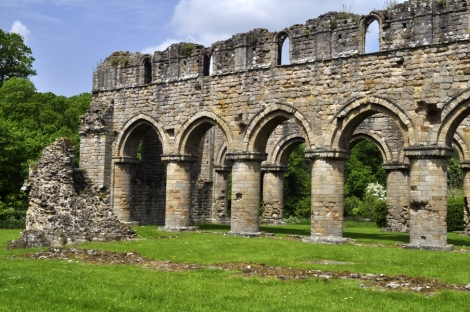 20160527 074 Buildwas Abbey