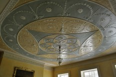 Ceiling in the Bird Room