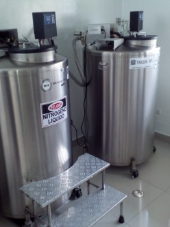 Tanks of liquid nitrogen in which the cultures are stored.
