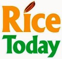 rice-today-logo