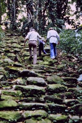 1980-01 001 Guayabo