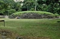 1980-01 020 Guayabo