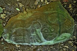 1980-01 023 Guayabo