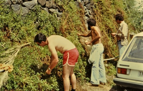 Me, Arnoldo, and Manuel in La Gomera, June 1981