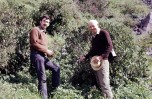 With Jack Hawkes, collecting Solanum multidissectum in the central Andes north of Lima