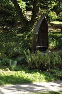 20180909 084 Glendurgan Garden