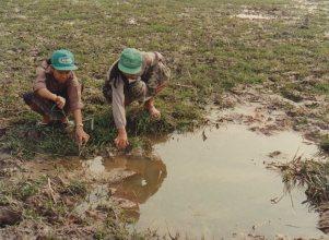 1997-02 011 Laos-IRRI