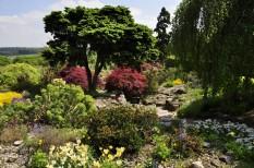 20190515 093 Emmetts Garden