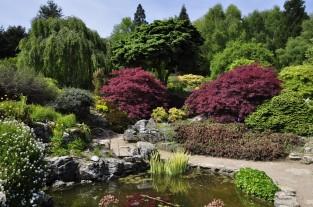 20190515 097 Emmetts Garden