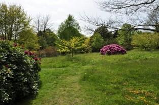 20190515 118 Emmetts Garden
