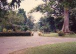 Sri Lanka 1990s 052