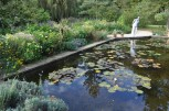 The Pine Garden and Lily Pool