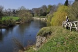 Along the River Wye