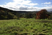 View towards Lordenshaw Iron Age hill-fort from the ornamental garden at Cragside